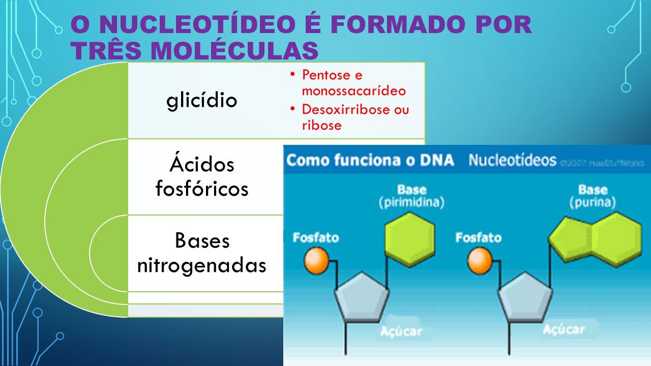 O Nucleotídeo é formado por três moléculas