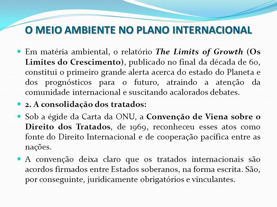 O MEIO AMBIENTE NO PLANO INTERNACIONAL