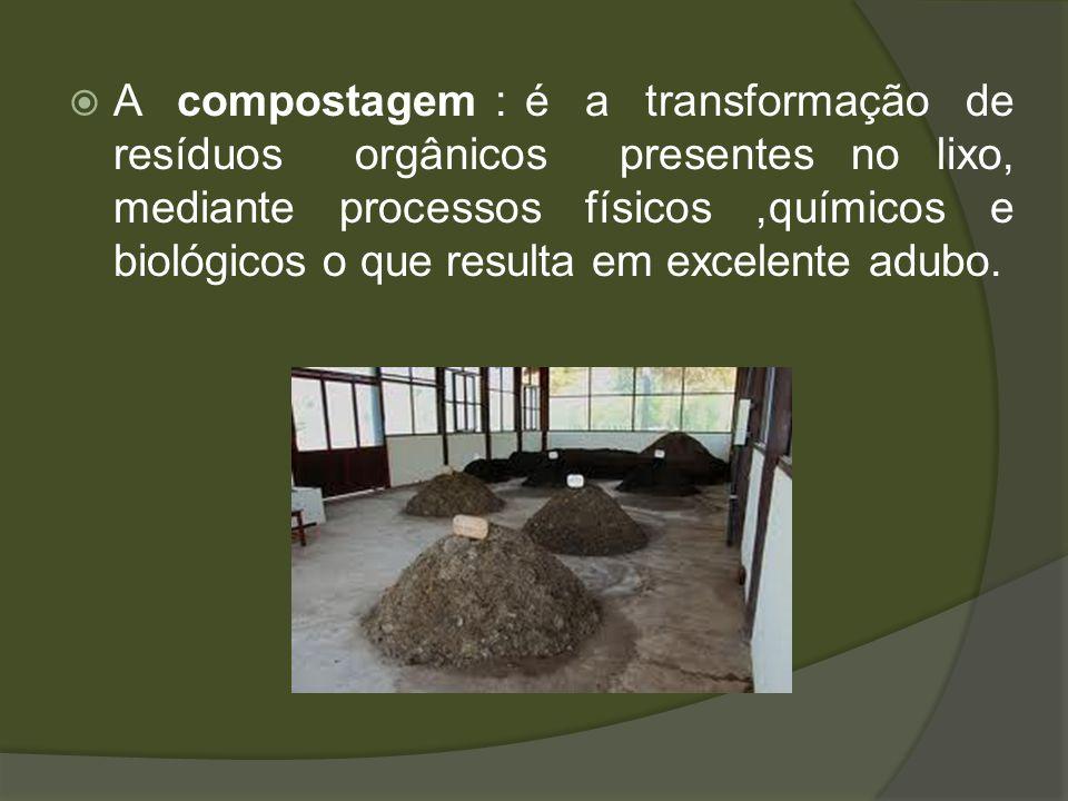 A compostagem : é a transformação de resíduos orgânicos presentes no lixo, mediante processos físicos ,químicos e biológicos o que resulta em excelente adubo.