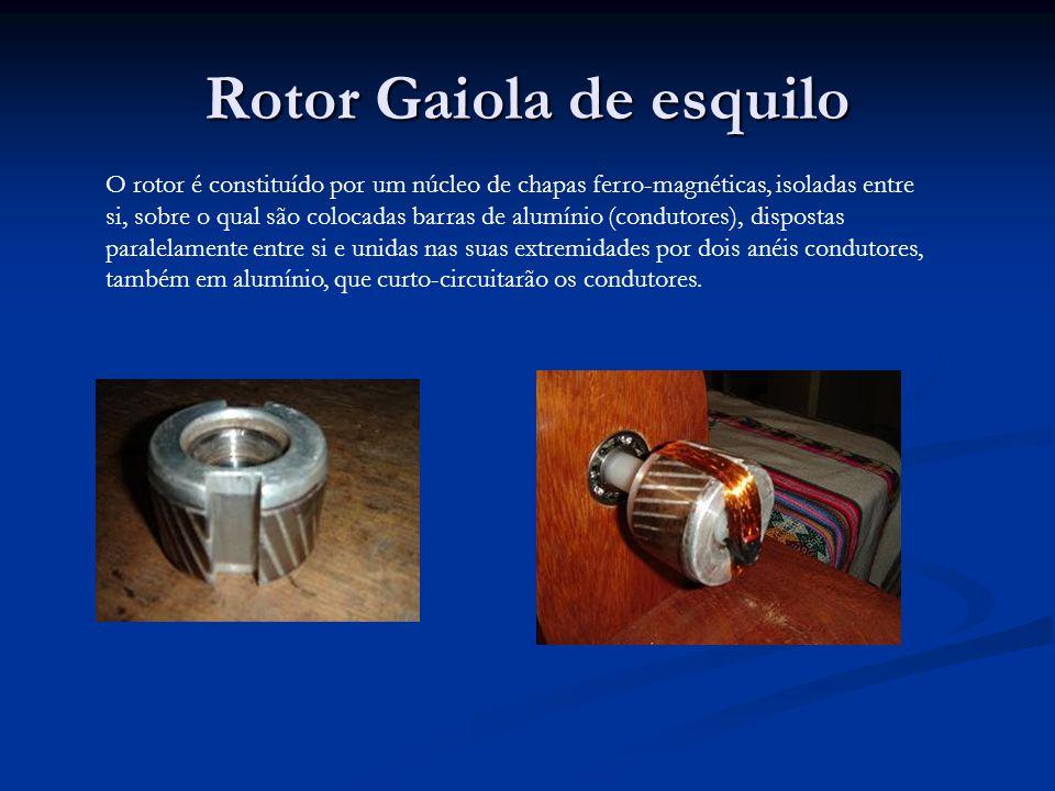 Rotor Gaiola de esquilo
