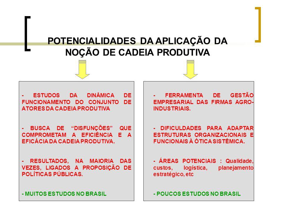 POTENCIALIDADES DA APLICAÇÃO DA NOÇÃO DE CADEIA PRODUTIVA