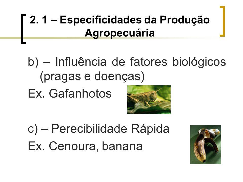 2. 1 – Especificidades da Produção Agropecuária