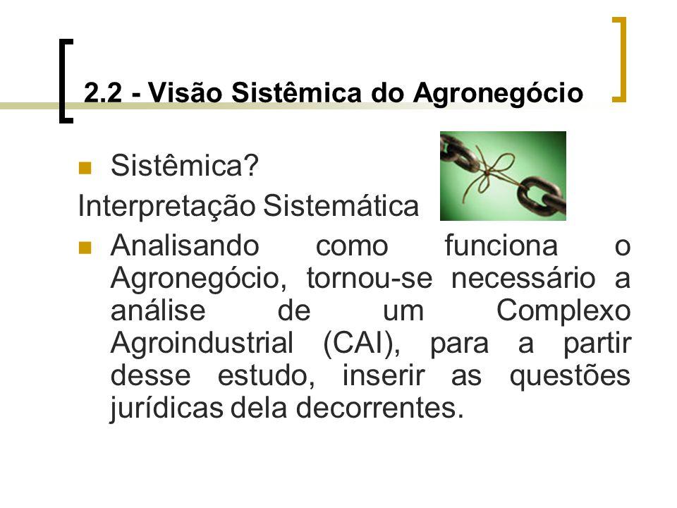 2.2 - Visão Sistêmica do Agronegócio