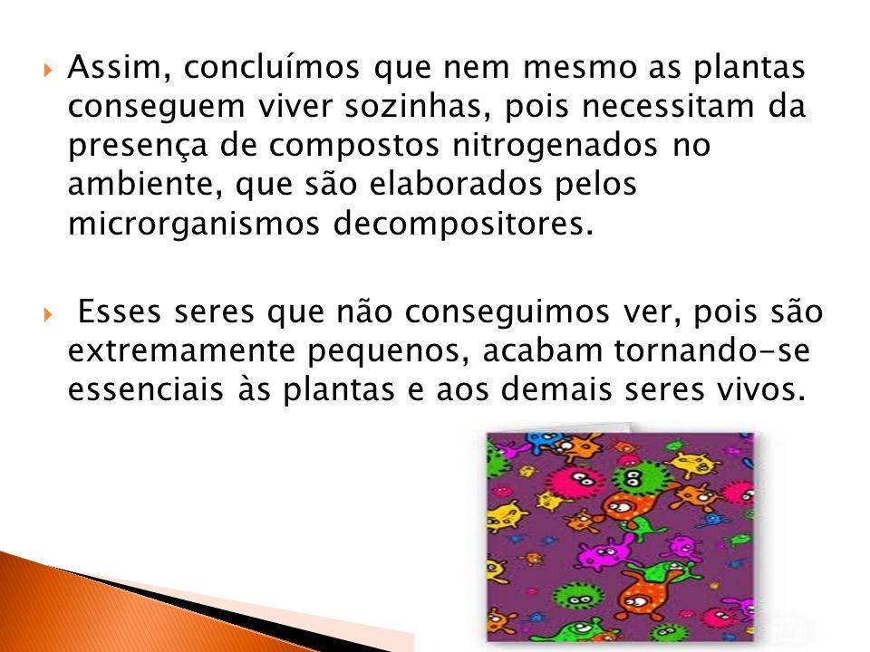 Assim, concluímos que nem mesmo as plantas conseguem viver sozinhas, pois necessitam da presença de compostos nitrogenados no ambiente, que são elaborados pelos microrganismos decompositores.