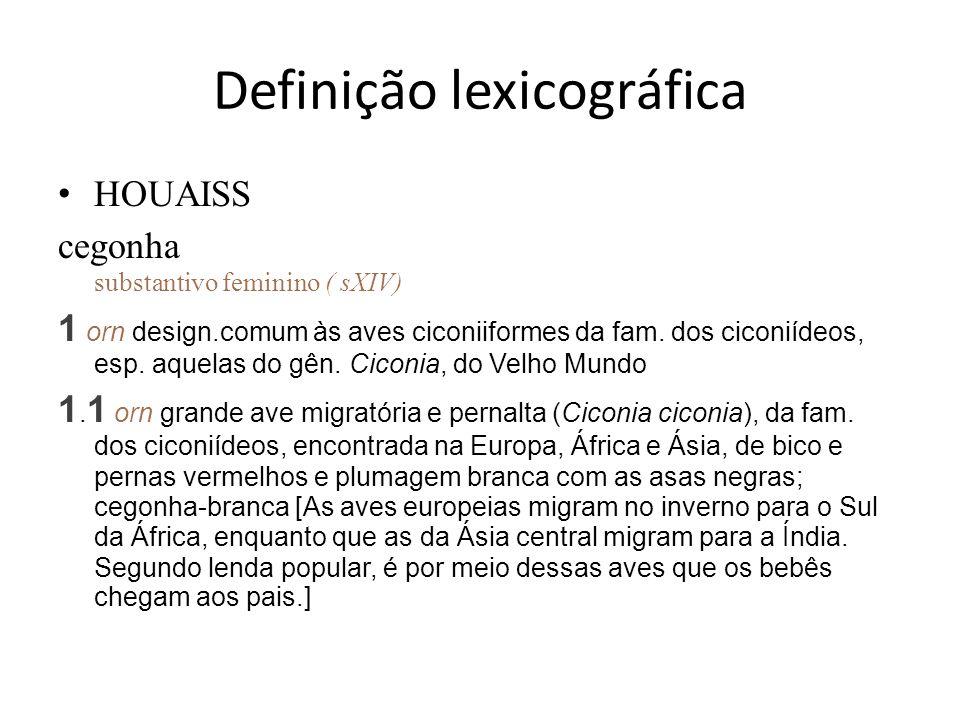 Definição lexicográfica