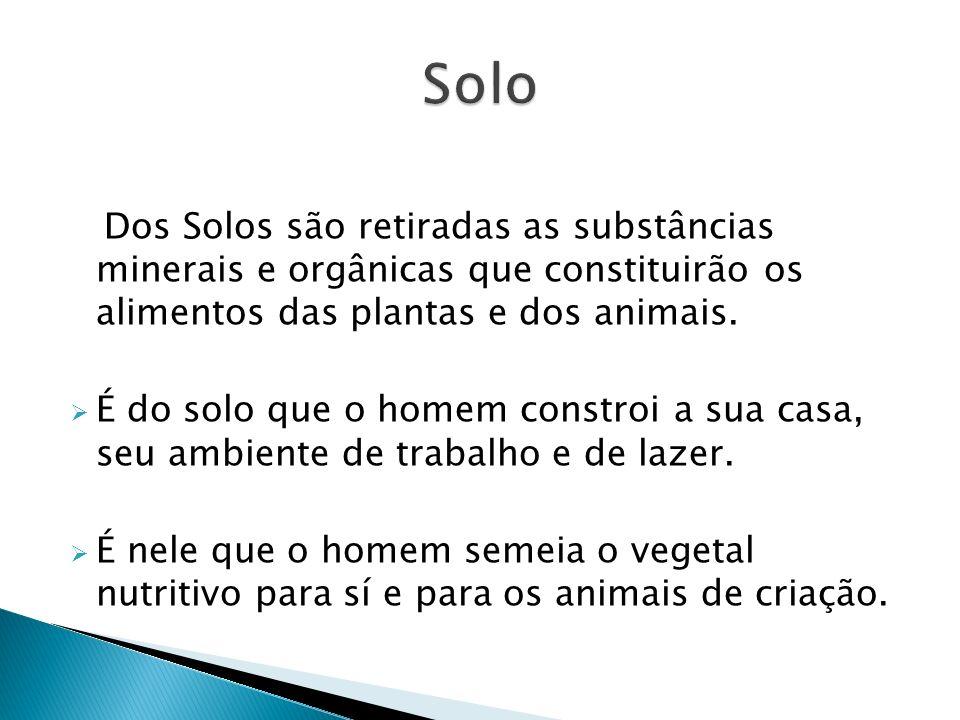 Solo Dos Solos são retiradas as substâncias minerais e orgânicas que constituirão os alimentos das plantas e dos animais.