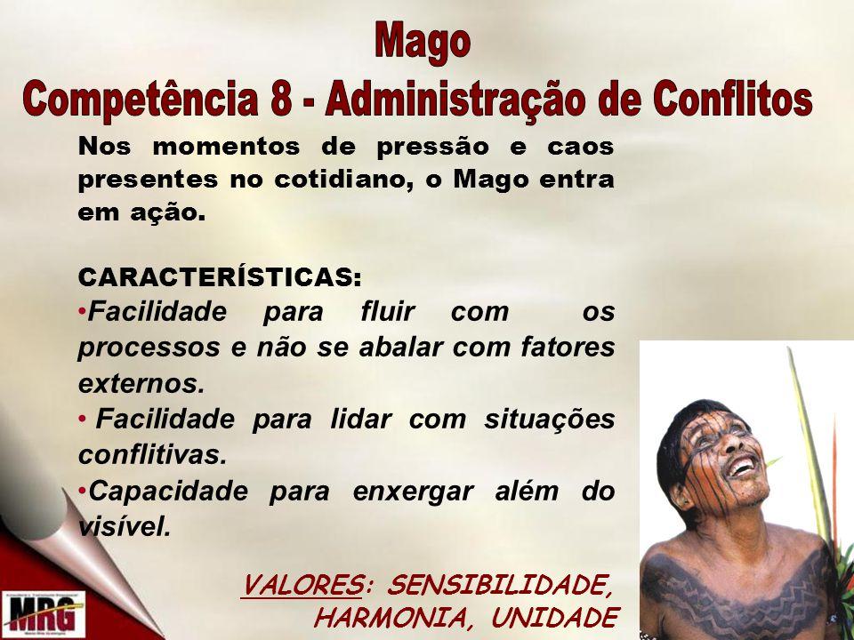 Competência 8 - Administração de Conflitos