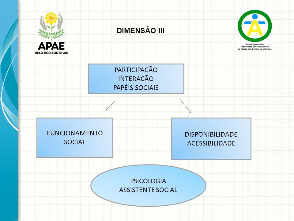 DIMENSÃO III PARTICIPAÇÃO. INTERAÇÃO. PAPÉIS SOCIAIS. FUNCIONAMENTO. SOCIAL. DISPONIBILIDADE. ACESSIBILIDADE.