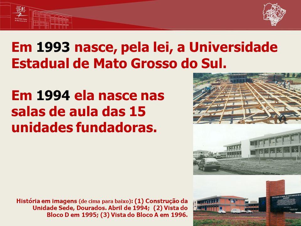 Em 1993 nasce, pela lei, a Universidade