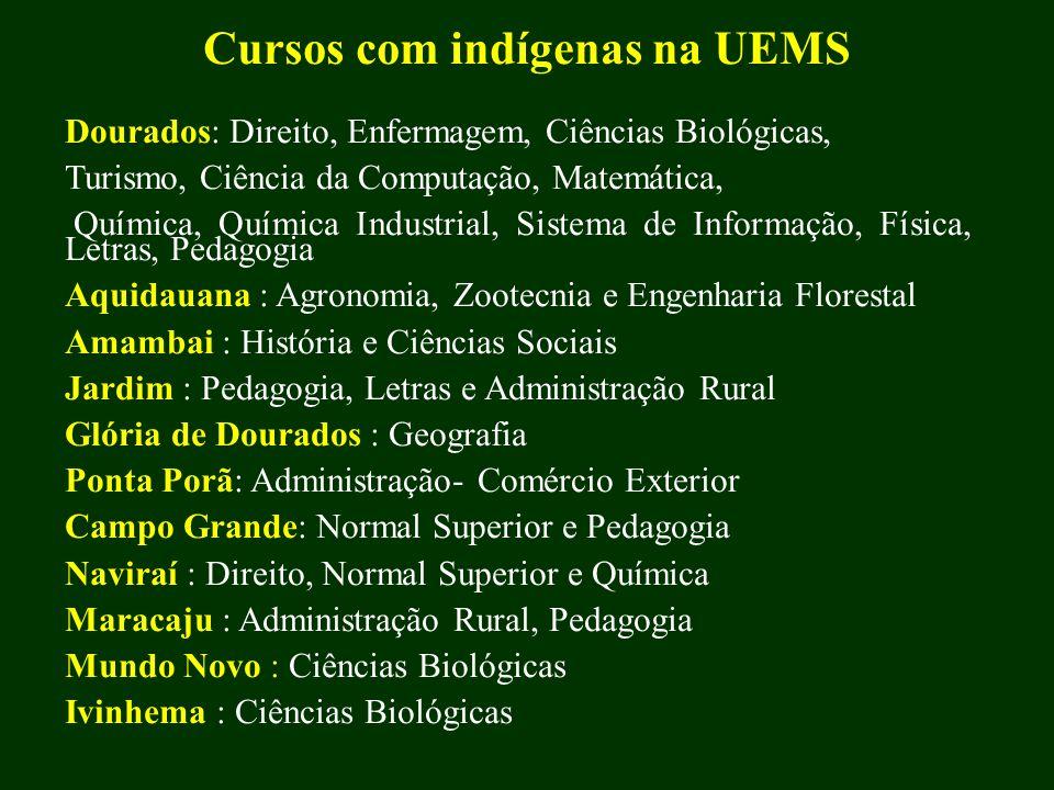 Cursos com indígenas na UEMS