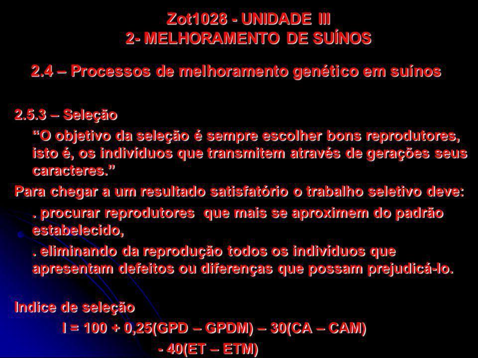 2.4 – Processos de melhoramento genético em suínos