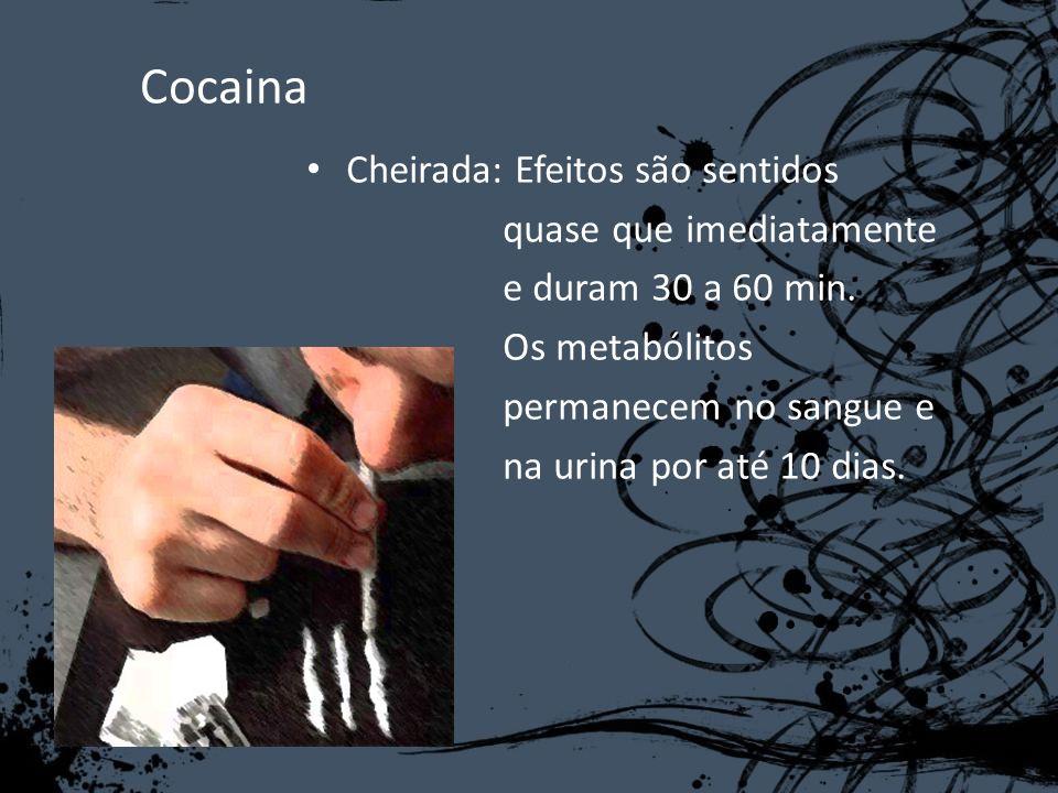 Cocaina Cheirada: Efeitos são sentidos quase que imediatamente