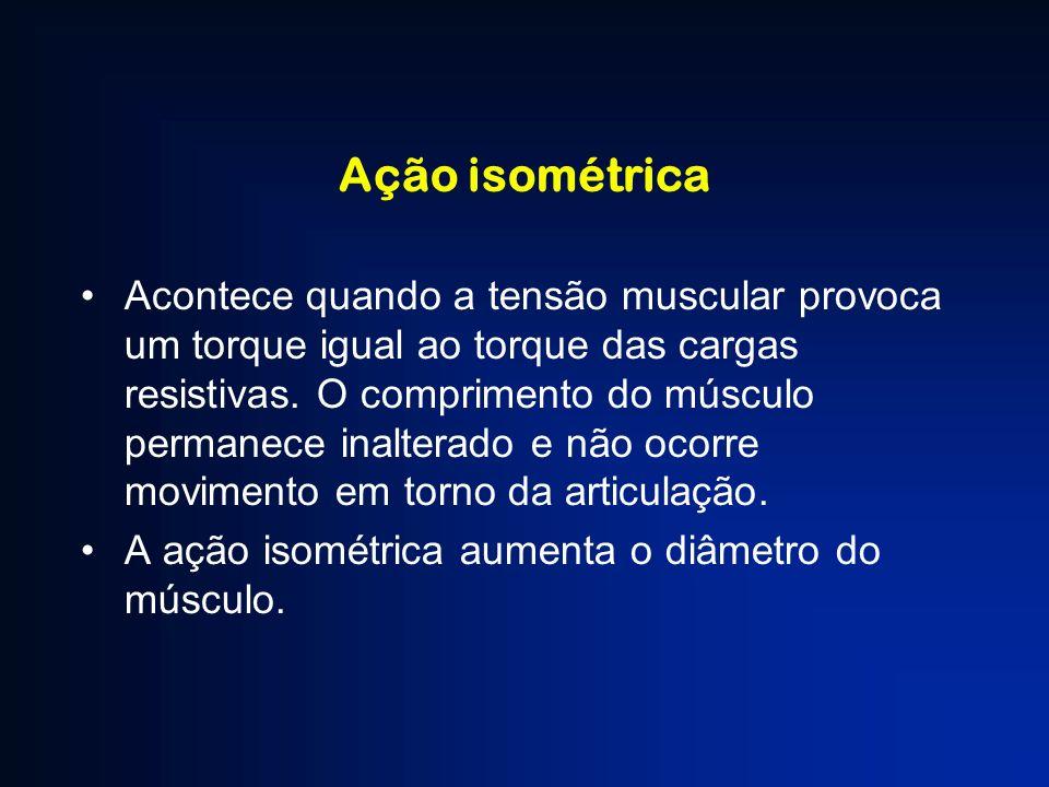 Ação isométrica