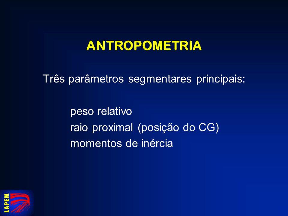 Três parâmetros segmentares principais: