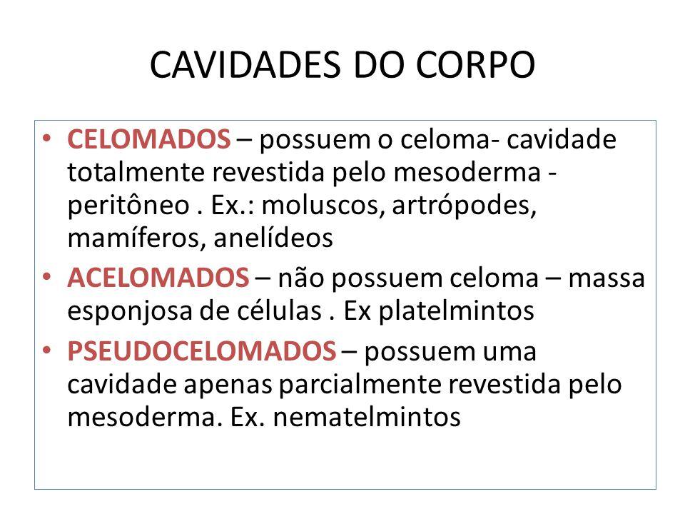 CAVIDADES DO CORPO