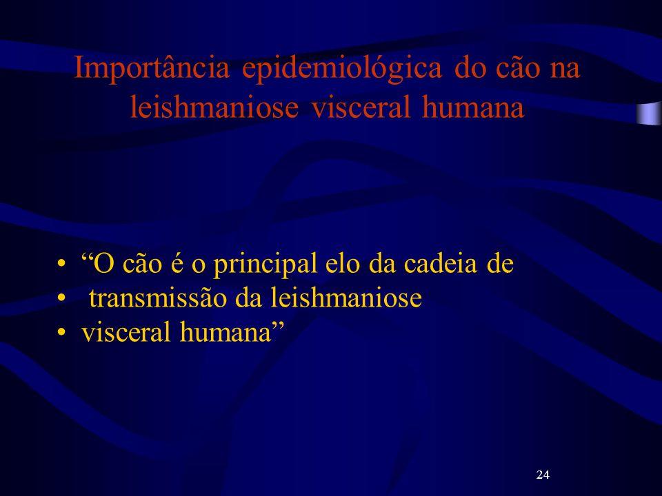 Importância epidemiológica do cão na leishmaniose visceral humana