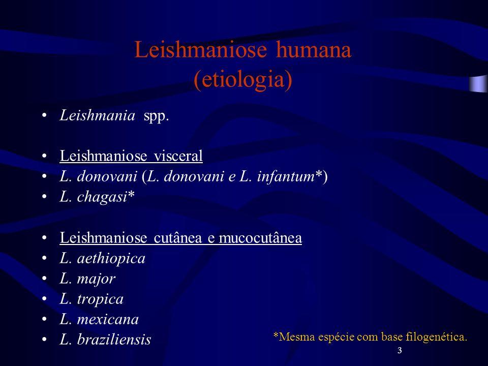 Leishmaniose humana (etiologia)