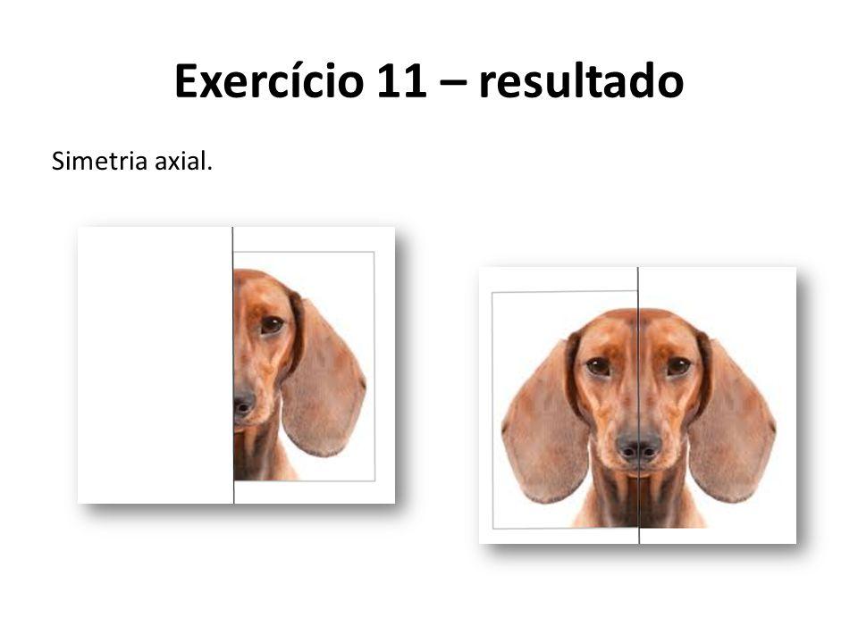 Exercício 11 – resultado Simetria axial.