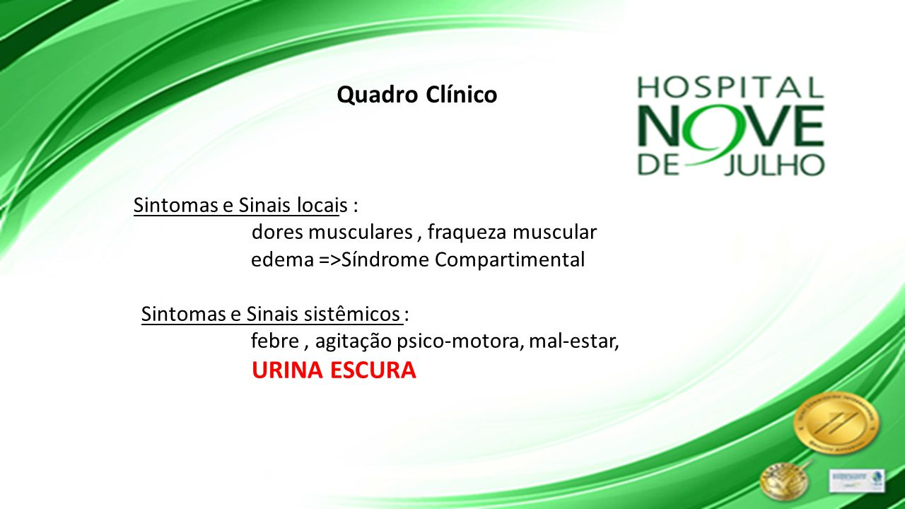 Quadro Clínico dores musculares , fraqueza muscular
