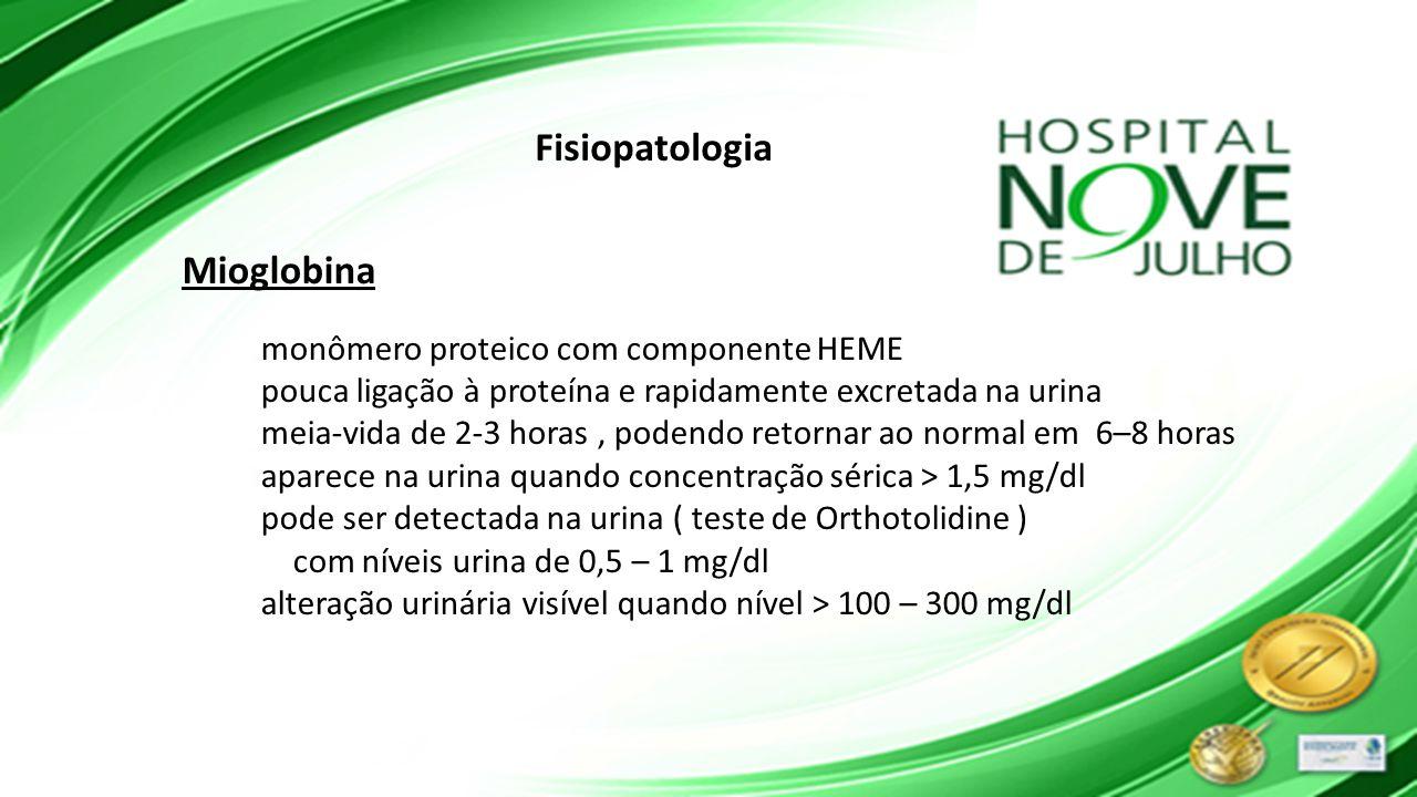 Fisiopatologia Mioglobina monômero proteico com componente HEME