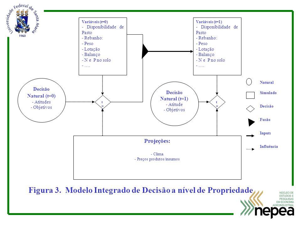 Figura 3. Modelo Integrado de Decisão a nível de Propriedade