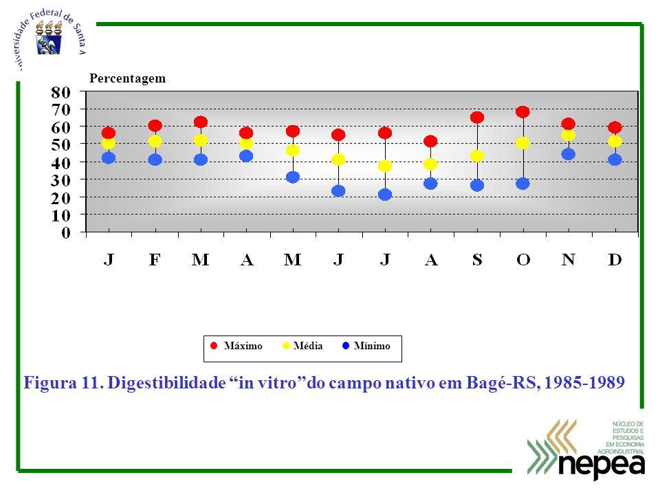 Percentagem Máximo Média Mínimo.
