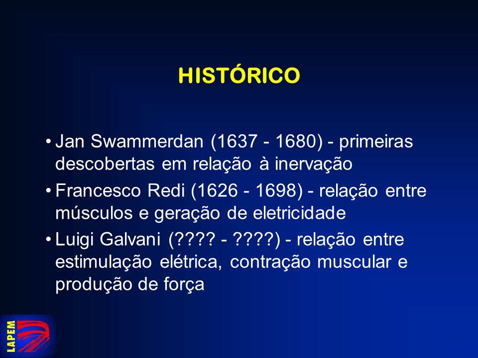 HISTÓRICO Jan Swammerdan (1637 - 1680) - primeiras descobertas em relação à inervação.
