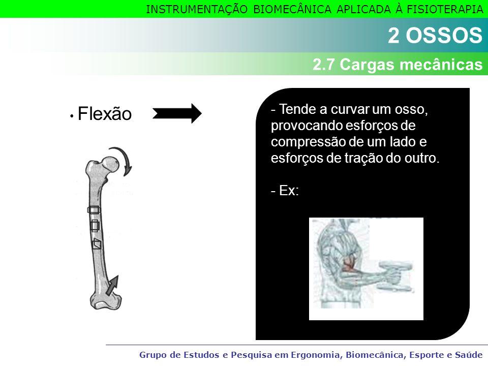 Instrumenta o biomec nica aplicada fisioterapia ppt for Esterno e um osso irregular