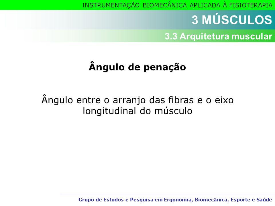 Ângulo entre o arranjo das fibras e o eixo longitudinal do músculo
