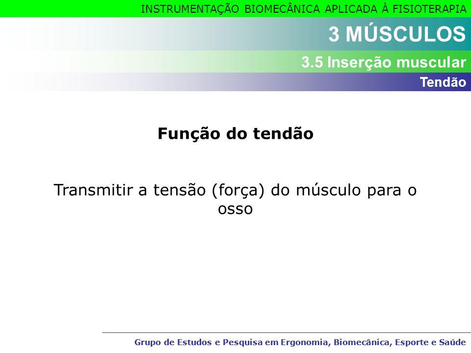Transmitir a tensão (força) do músculo para o osso