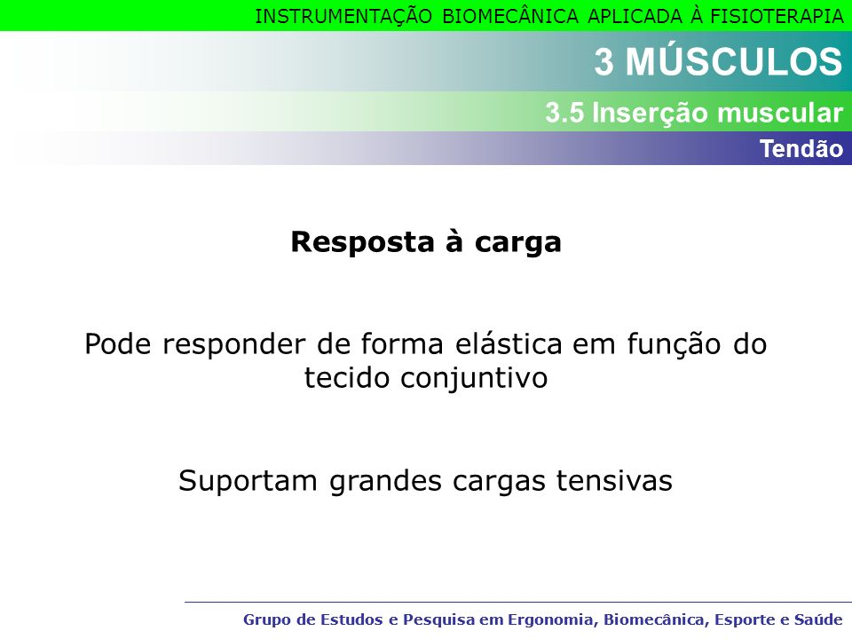 3 MÚSCULOS 3.5 Inserção muscular Resposta à carga