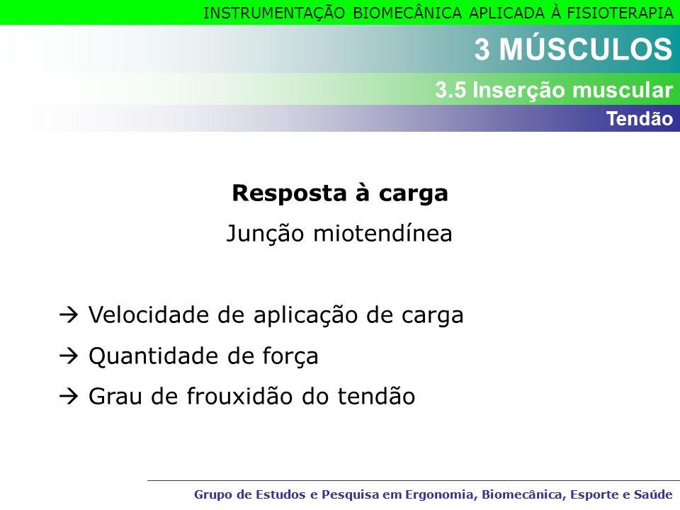 3 MÚSCULOS 3.5 Inserção muscular Resposta à carga Junção miotendínea