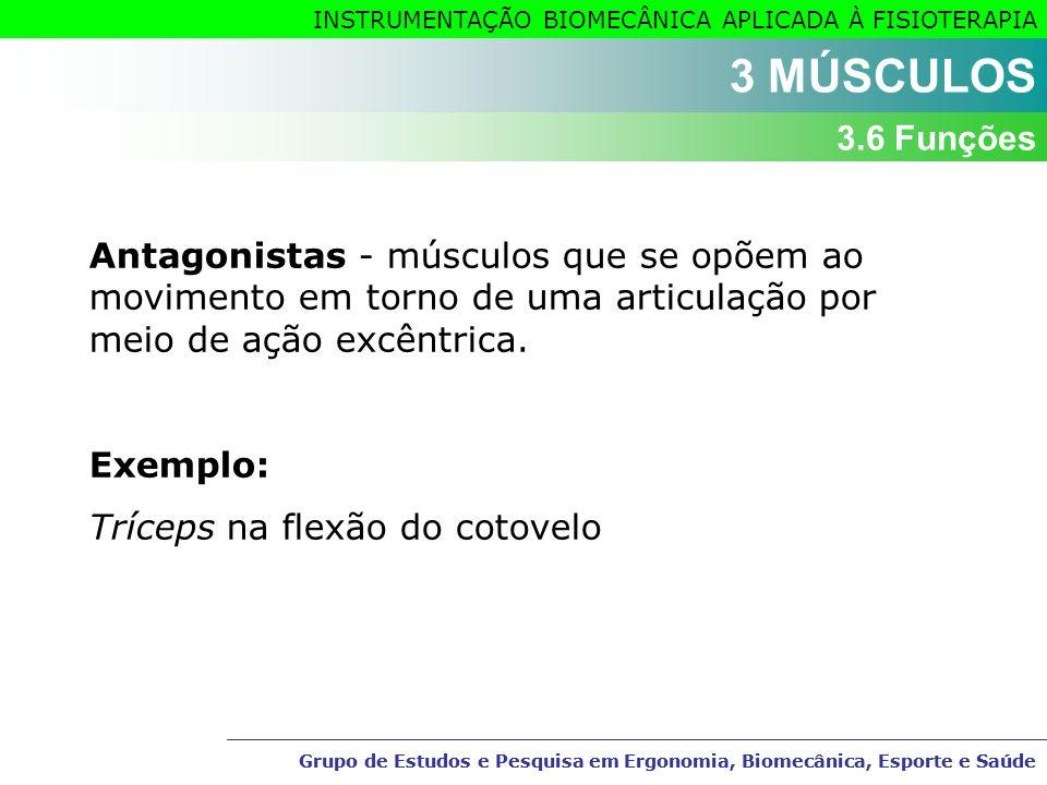 3 MÚSCULOS 3.6 Funções. Antagonistas - músculos que se opõem ao movimento em torno de uma articulação por meio de ação excêntrica.
