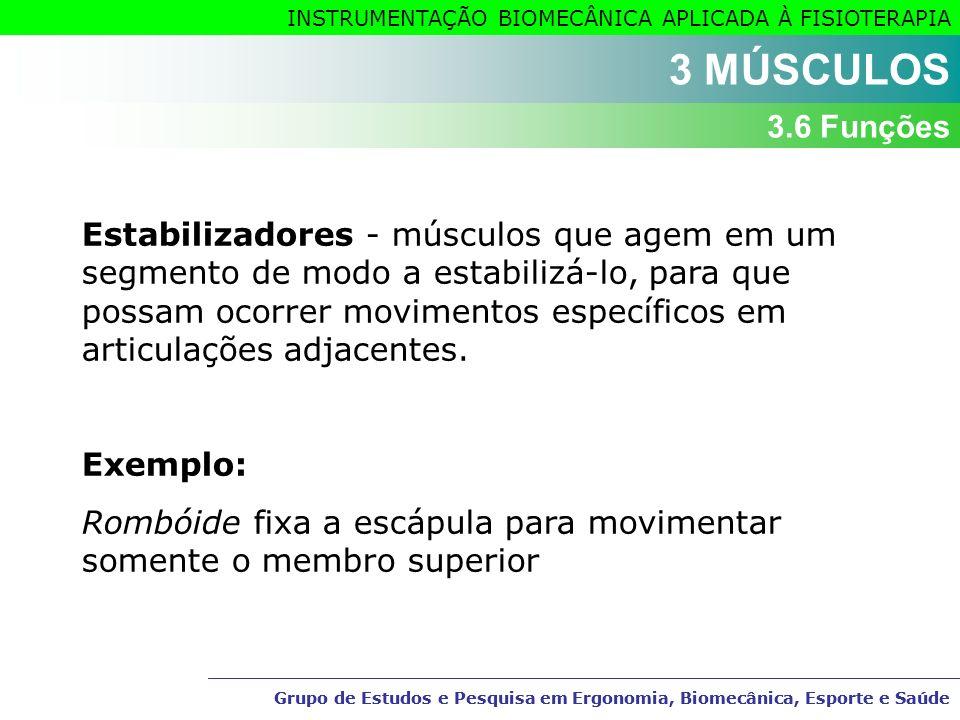 3 MÚSCULOS 3.6 Funções.