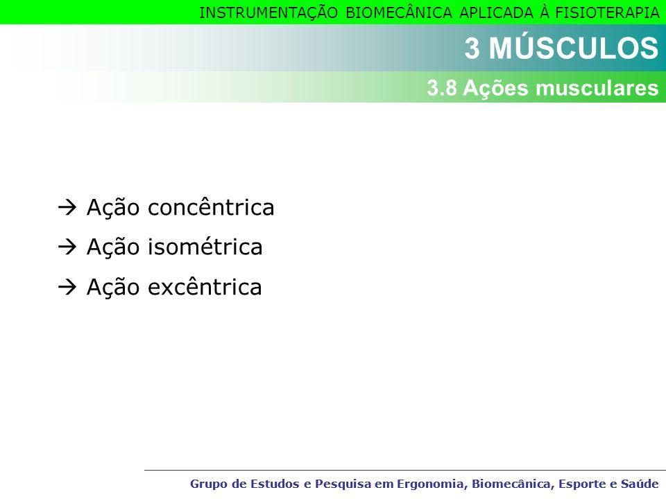 3 MÚSCULOS 3.8 Ações musculares  Ação concêntrica  Ação isométrica