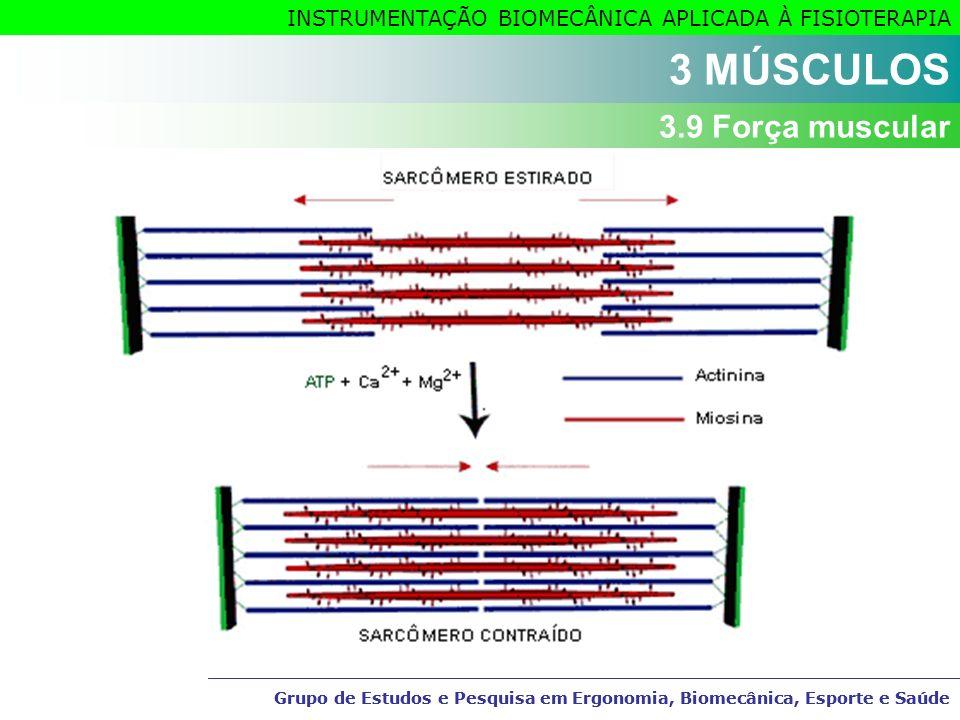 3 MÚSCULOS 3.9 Força muscular
