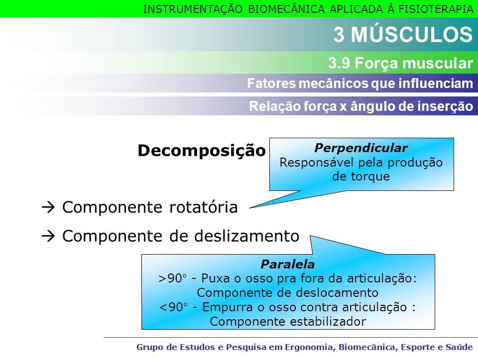 3 MÚSCULOS 3.9 Força muscular Decomposição da força