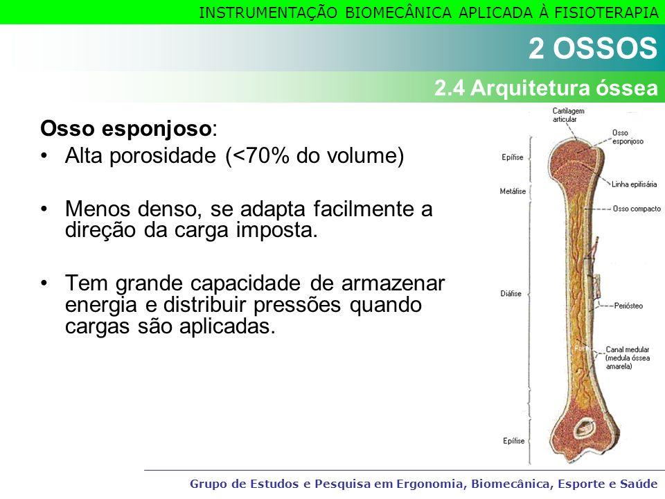 2 OSSOS 2.4 Arquitetura óssea Osso esponjoso: