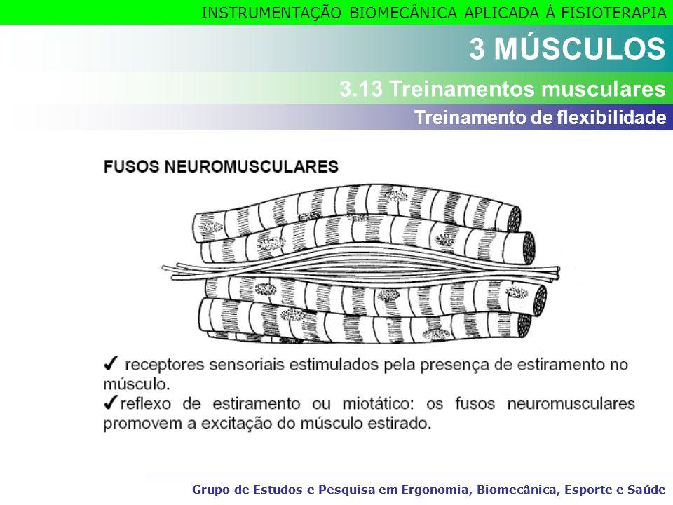 3 MÚSCULOS 3.13 Treinamentos musculares Treinamento de flexibilidade