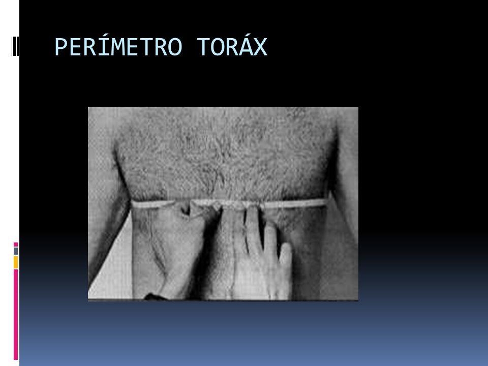 PERÍMETRO TORÁX