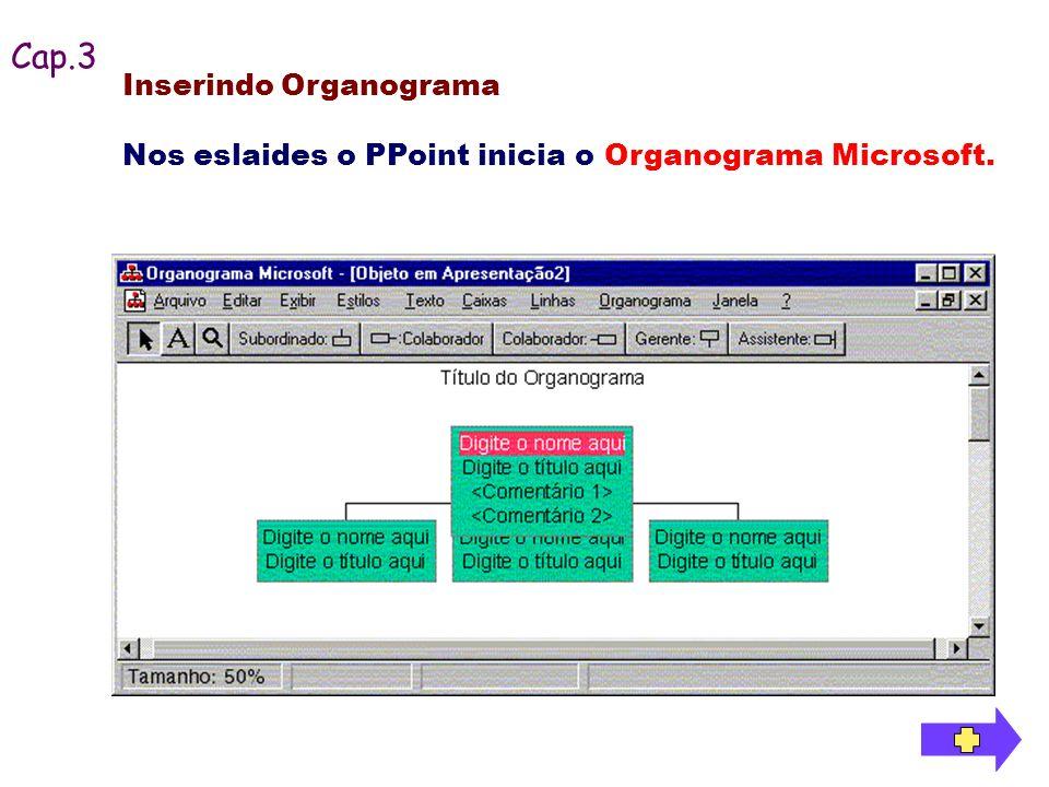 Cap.3 Inserindo Organograma