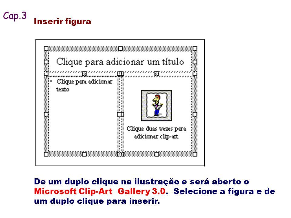Cap.3 Inserir figura.