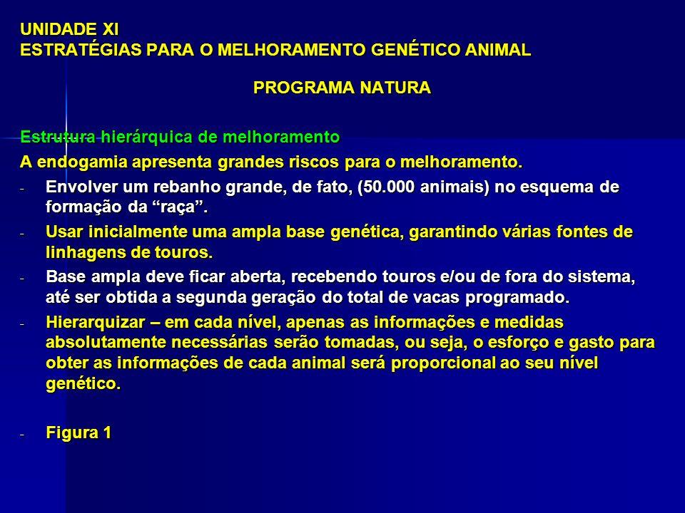 UNIDADE XI ESTRATÉGIAS PARA O MELHORAMENTO GENÉTICO ANIMAL
