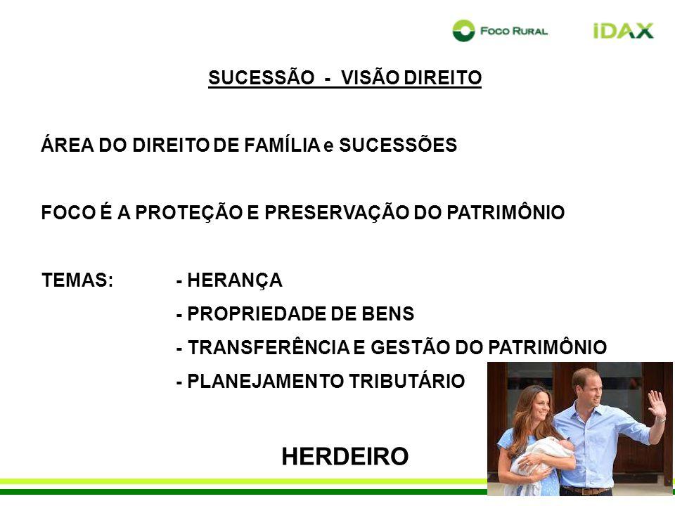 SUCESSÃO - VISÃO DIREITO