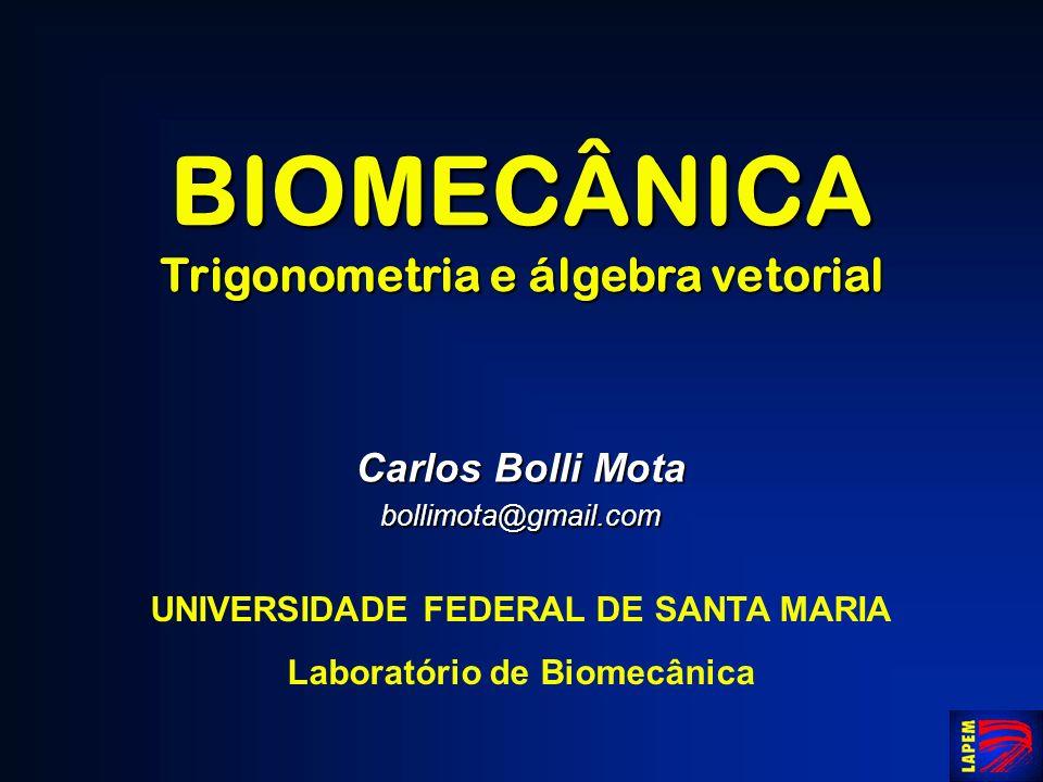 BIOMECÂNICA Trigonometria e álgebra vetorial Carlos Bolli Mota