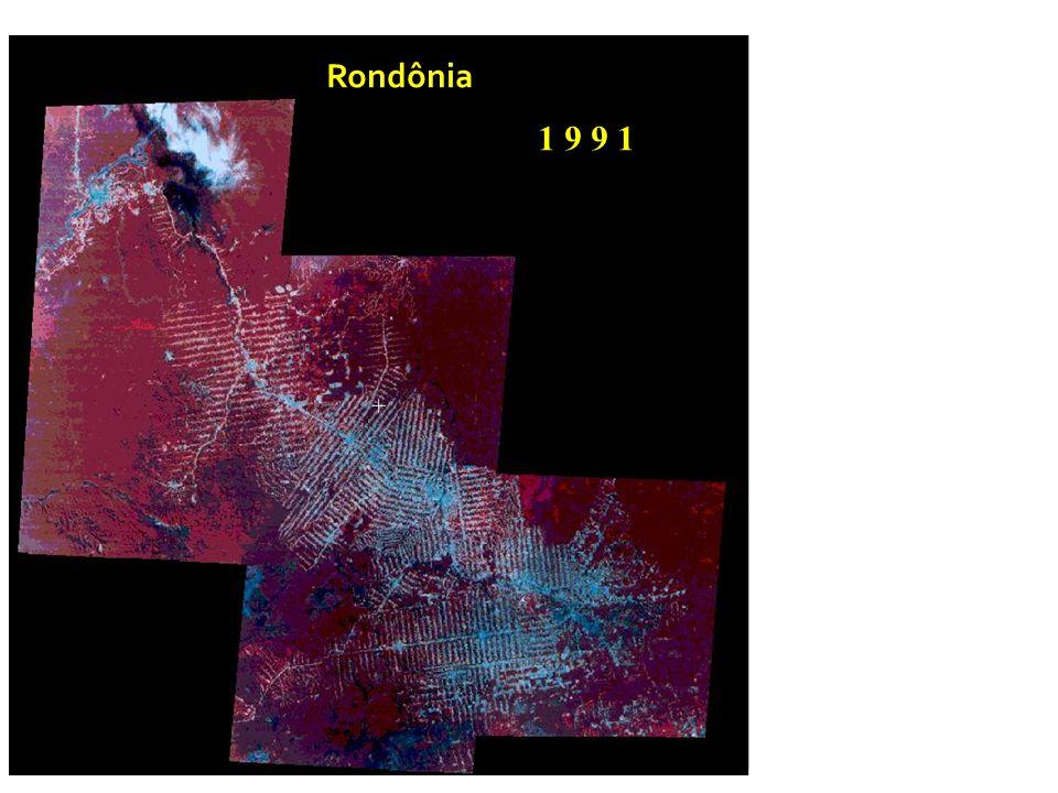 Rondônia 1 9 9 1