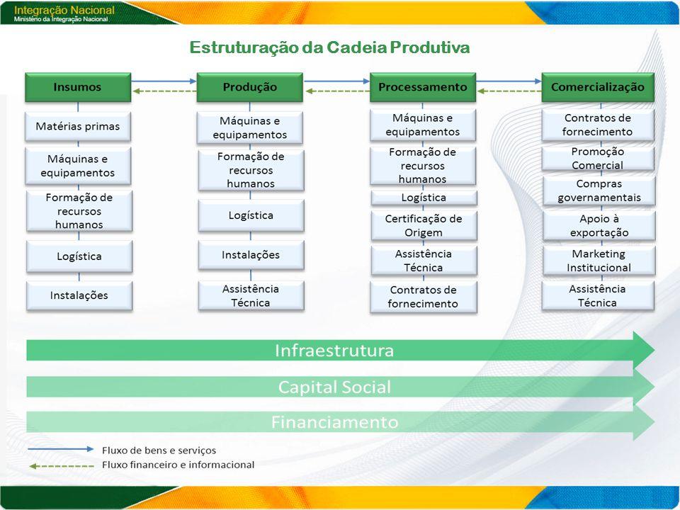 Estruturação da Cadeia Produtiva