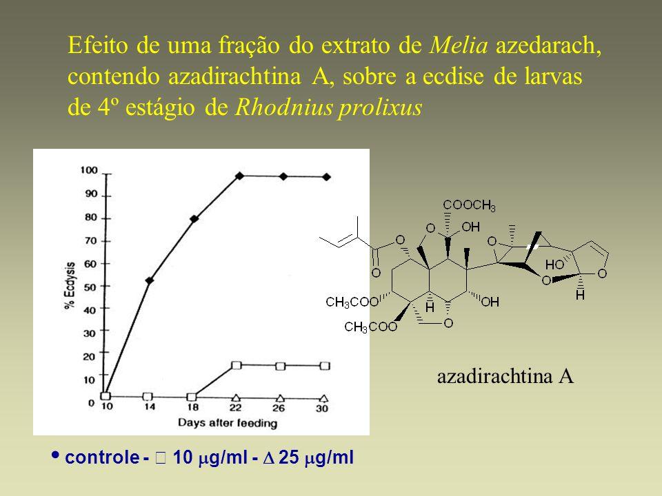 • controle -  10 mg/ml -  25 mg/ml