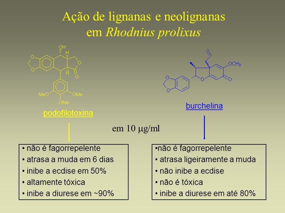 Ação de lignanas e neolignanas em Rhodnius prolixus