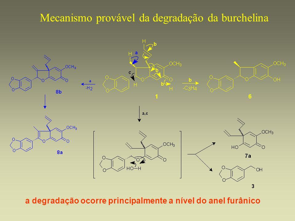 Mecanismo provável da degradação da burchelina